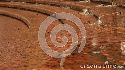 Κόκκινος γρανίτης κάτω από το νερό απόθεμα βίντεο