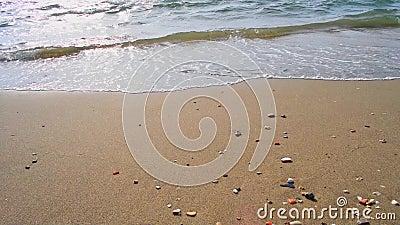 Κύματα σε παραλία φιλμ μικρού μήκους