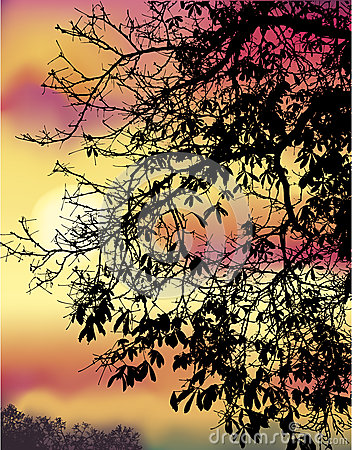 Κλάδοι κάστανων φθινοπώρου