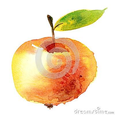 μήλο watercolour