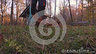 Μαζεψτε με τη τσουγκράνα τα φύλλα φιλμ μικρού μήκους