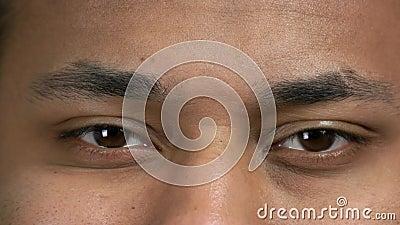 Μακροεντολή με μάτια φιλμ μικρού μήκους