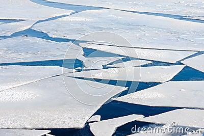 μεγάλη παγωμένη επιπλέοντες πάγοι θάλασσα πάγου
