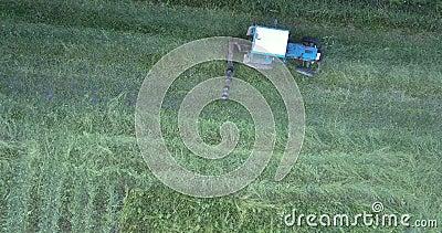 Μηχανισμός με τις κινήσεις λεπίδων κατά μήκος του τομέα που κόβει τη χλόη φιλμ μικρού μήκους