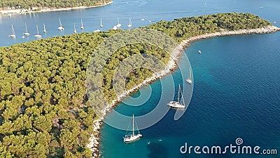 Μύγα πέρα από sailboats φιλμ μικρού μήκους