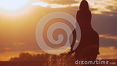 Νέο άλογο οδήγησης γυναικών στο φωτεινό ηλιοβασίλεμα