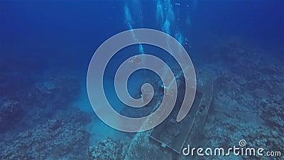 Ναυάγιο Βυθού Βυθίστηκε Στη Βαθιά Γαλάζια Θάλασσα απόθεμα βίντεο