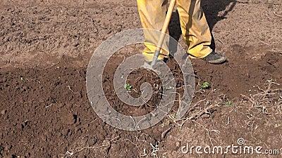 Να απασχοληθεί την άνοιξη στον κήπο με raker το εργαλείο φιλμ μικρού μήκους