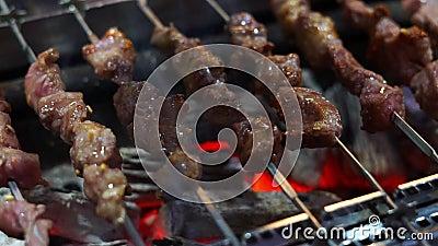 Οβελίδιο κρέατος στη σχάρα απόθεμα βίντεο