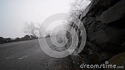 Ομιχλώδης ημέρα Πρωινή ομίχλη στο δρόμο με φύλλα δέντρων απόθεμα βίντεο