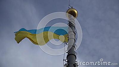 Ουκρανική σημαία κυματίζει Φόντο σημαίας της Ουκρανίας απόθεμα βίντεο