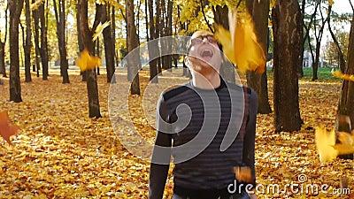 Ο αστείος τύπος ρίχνει μια δέσμη των φύλλων σφενδάμου επάνω και ευτυχής όπως ένα σκυλί στο πάρκο φθινοπώρου Πτώση φύλλων σε μια π απόθεμα βίντεο