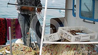 Ο ψαράς βγάζει μια αλιεία από τα δίχτυα του ψαρέματος Ηλικιωμένος ναυτικός στο λιμένα Bodrum, Τουρκία απόθεμα βίντεο