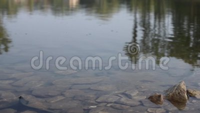 Πέτρες στη λίμνη απόθεμα βίντεο