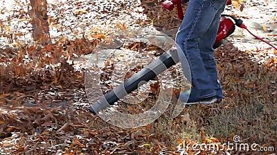 Παιδί που χρησιμοποιεί ηλεκτρικό ανεμιστήρα φύλλων κατά την πτώση απόθεμα βίντεο