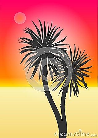παραλία εξωτική