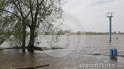 Πλημμύρα άνοιξη στον ποταμό Irtysh στην πόλη του Ομσκ, Ρωσία απόθεμα βίντεο