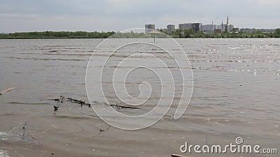 Πλημμύρα νερού του ποταμού Irtysh στο Ομσκ, Ρωσία απόθεμα βίντεο