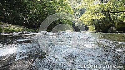 Πολύ ρηχός ποταμός φιλμ μικρού μήκους