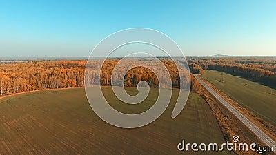 Πράσινος τομέας και κίτρινα δέντρα φθινοπώρου highway rural κενός δρόμος απόθεμα βίντεο