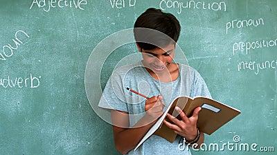 Προσεκτικός μαθητής που κάνει την εργασία στην τάξη απόθεμα βίντεο