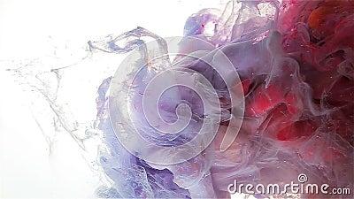 Πτώση μελανιού χρώματος Αργό falll Ανοικτό βιολετί, κόκκινος, ροδανιλίνη απόθεμα βίντεο