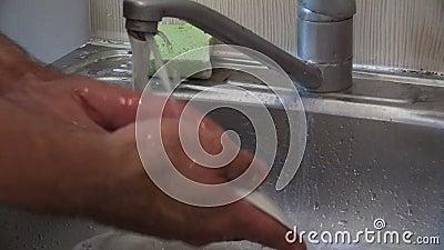 Πλύντε ένα πιάτο απόθεμα βίντεο