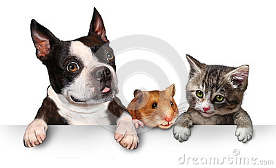Σημάδι κατοικίδιων ζώων