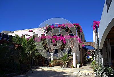 Σκηνές από Santorini