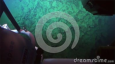 Σπηλιά, σκόπελοι, κοράλλι, άποψη μεγάλων θαλασσίων βαθών από το υποβρύχιο σε βάθος 300 μ - Ειρηνικός Ωκεανός απόθεμα βίντεο