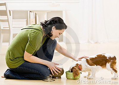 ταΐζοντας γυναίκα σκυλ&io