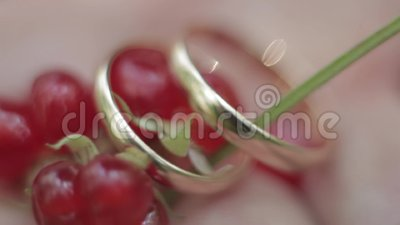 Τα γαμήλια δαχτυλίδια είναι πολύ κινηματογράφηση σε πρώτο πλάνο φιλμ μικρού μήκους