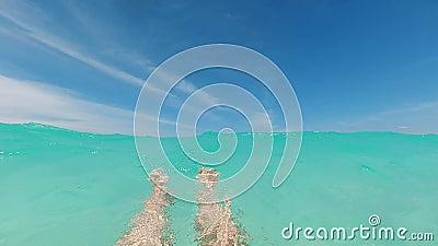 Τα γυναικεία πόδια κολυμπούν κάτω από την επιφάνεια Θέα των ποδιών της γυναίκας που κολυμπούν κάτω από το κρυστάλλινο μπλε νερό σ απόθεμα βίντεο