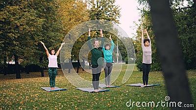 Τα όμορφα κορίτσια sportswear ασκούν τη γιόγκα κάνοντας τις παραλλαγές της θέσης δέντρων που κινείται έπειτα στην έδρα θέτουν απόθεμα βίντεο
