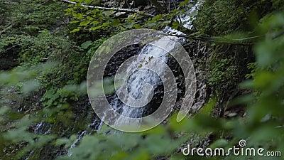 Τεράστιος όμορφος καταρράκτης στο δάσος Ομορφιά της φύσης, άγρια φύση Εντυπωσιακό τοπίο Το νερό πέφτει στο απόθεμα βίντεο