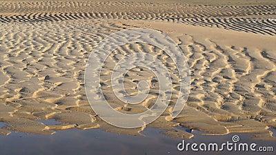 Τηλεοπτικά κορυφογραμμές και furrows στην παραλία υγρή άμμος στην παραλία που παρουσιάζει μορφή μετά από την παλίρροια απόθεμα βίντεο