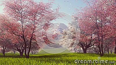 Τοποθετήστε το Φούτζι και τα ανθίζοντας δέντρα κερασιών σε αργή κίνηση 4K απόθεμα βίντεο