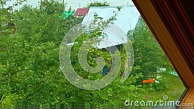 Τοπ άποψη μέσω του παραθύρου στον παλαιό κήπο στη βροχή απόθεμα βίντεο