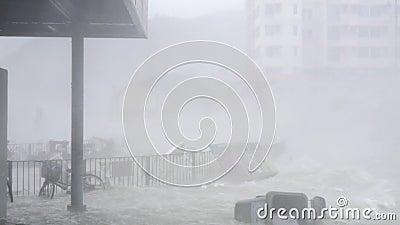 Τυφώνας Mangkhut τυφώνα κοντά στη στάση λεωφορείου απόθεμα βίντεο