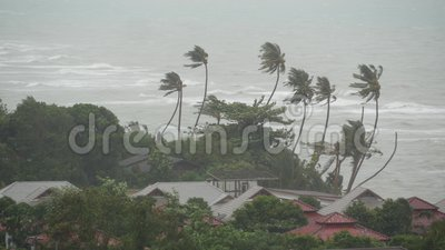 Τυφώνας Pabuk, ωκεάνια ακροθαλασσιά, Ταϊλάνδη Φυσική καταστροφή, eyewall τυφώνας Ο ισχυρός ακραίος αέρας κυκλώνων ταλαντεύεται το φιλμ μικρού μήκους