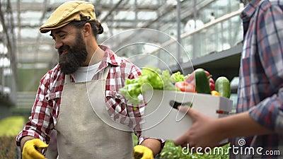 Φιλικός αγρότης που δίνει κουτί φρέσκα λαχανικά σε πελάτες, γεωργικές επιχειρήσεις φιλμ μικρού μήκους