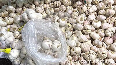 Φρέσκο οργανικό υγιές σκόρδο στην αγορά τροφίμων Λαχανικό σκόρδου Κλείστε επάνω 4k το μήκος σε πόδηα Χέρι γυναικών που επιλέγει τ φιλμ μικρού μήκους