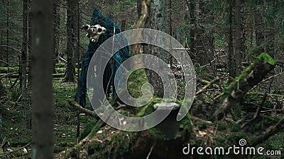 Φρικτό πλάσμα που στέκεται μεταξύ των δέντρων στο δασικό φοβερό τέρας απόθεμα βίντεο