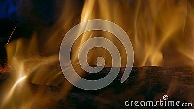 Φλόγες και άνθρακες στην πυρκαγιά φιλμ μικρού μήκους