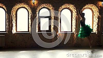 Χαριτωμένος ballerina χορός μπαλέτου χορού κλασικός απόθεμα βίντεο