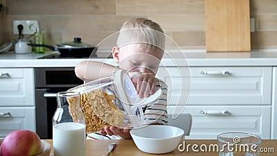 Χαριτωμένο αγόρι 4 χρονών που έχει τα δημητριακά προγευμάτων με το γάλα στον πίνακα στο σπίτι απόθεμα βίντεο