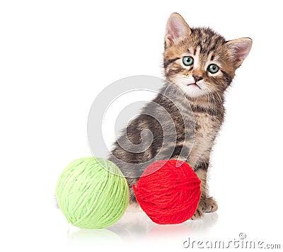Χαριτωμένο γατάκι