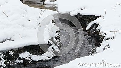 Χειμερινός κολπίσκος κάτω από το χιόνι απόθεμα βίντεο