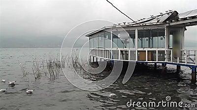 Χειμωνιάτικο τοπίο από Λίμνη / Τουρκία απόθεμα βίντεο