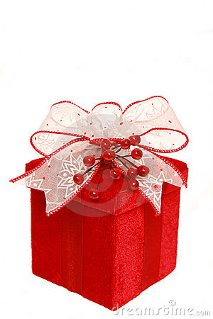 χριστουγεννιάτικο δώρο